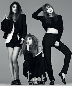 4minute Black and White 1st Look Magazine Vol. 43 May 2013 (2)